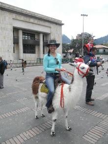 Johanna rides a Llama