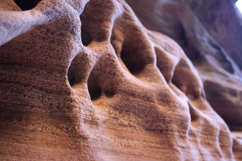 Unique erosion sculptures in the side-canyons of Zion