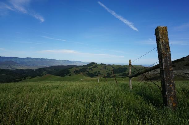 Prefumo Canyon, San Luis Obispo